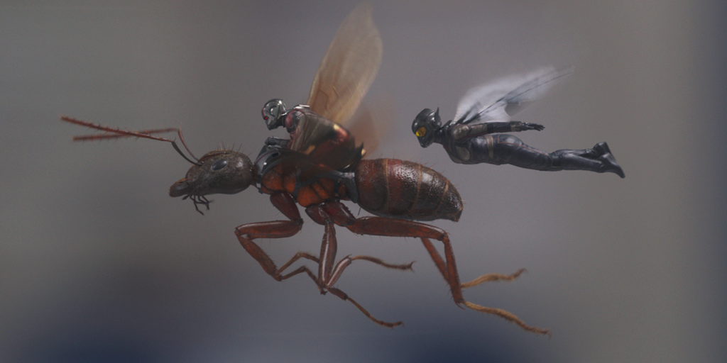 They take flightin Ant-Man and the Wasp   Credit: Marvel