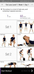 Anytime Workout   Top Sites And Apps To Keep Your #FitnessGoals with Home Workouts   The Little Binger